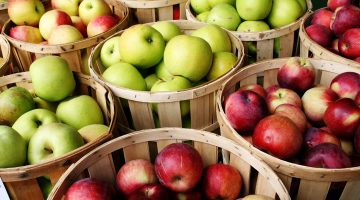 Here's A Great Explanation Of Why Eating 'An Apple A Day' Really Keeps The Doctor Away