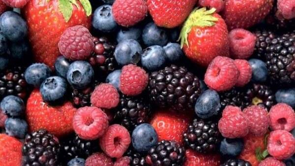 berries-600x337