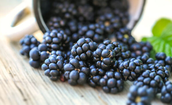 blackberries-600x367