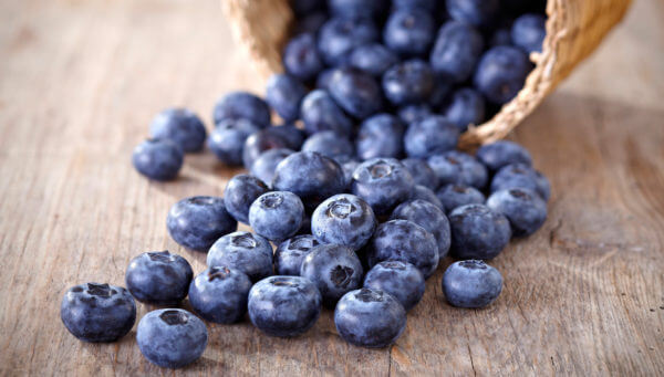 blueberries-1-600x341