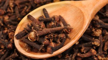 Consuming Cloves Can Exterminate Candida Fungus In The Body