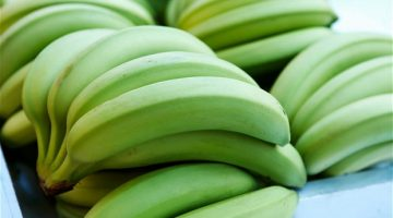 The Health Powers of Cooked Green Bananas Are Amazing