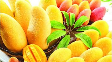 Eating Mangoes Will Clean Cancer Cells Out The Body