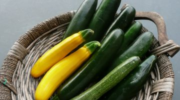 Eating Zucchini Does Wonders For Weight Loss