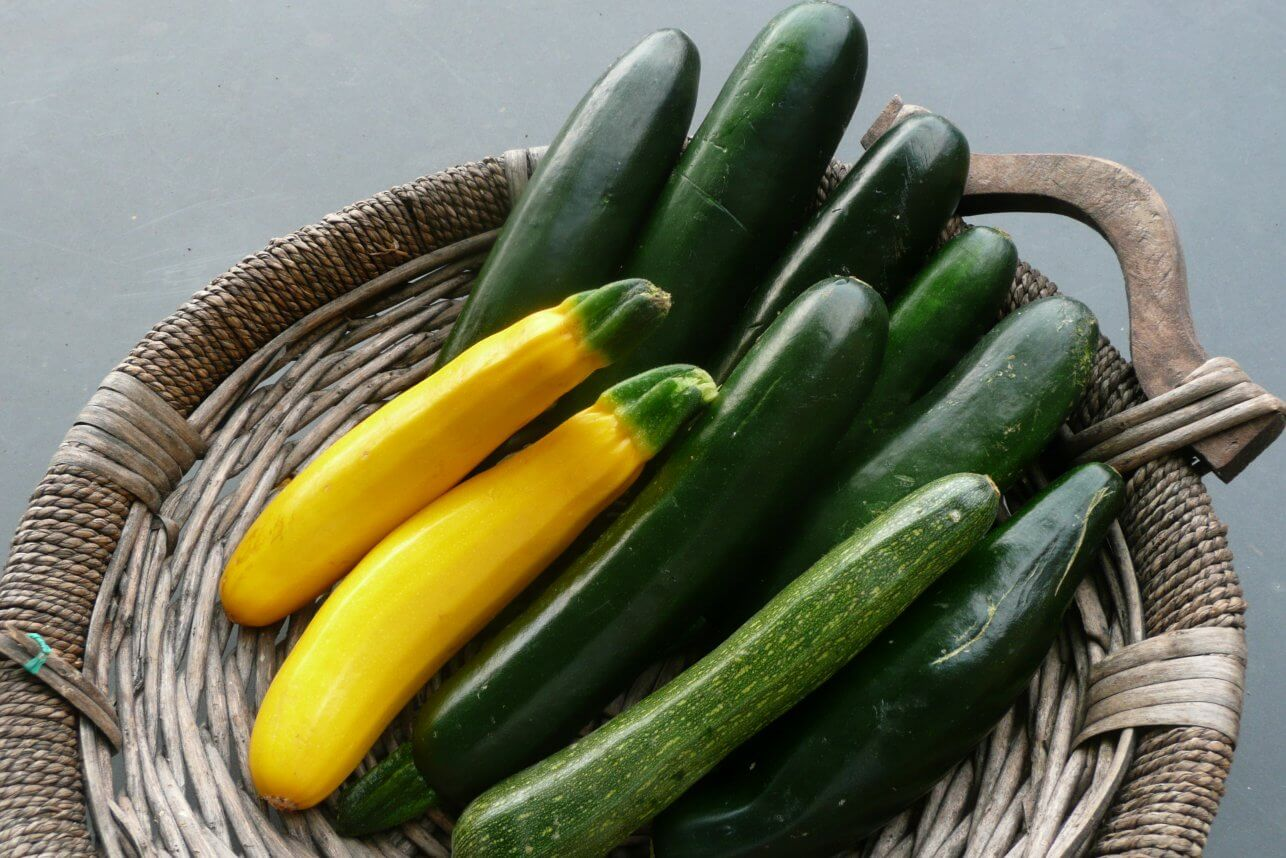 Eating Zucchini Does Wonders For Weight Loss Alkaline
