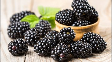Eating Blackberries May Be A Great Choice For People Suffering From Memory Loss