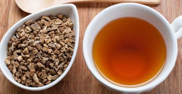 Burdock-Root-Tea