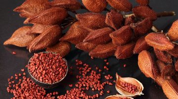 7 Of The Healthiest Alkaline Spices In The World That Mainstream Media Doesn't Talk About