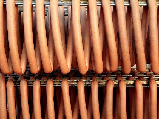 hot dog5
