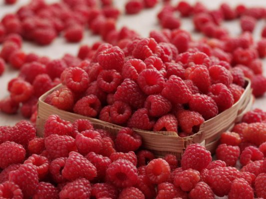 pile of Raspberries in punnett