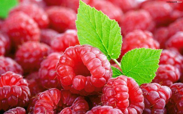 raspberries4