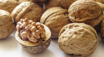 Walnuts Lower Cholesterol And Prevent Heart Disease In Older Adults