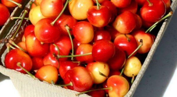 Cherries5