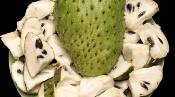 9 Incredible Health Benefits Of Soursop That Can Save Your Life