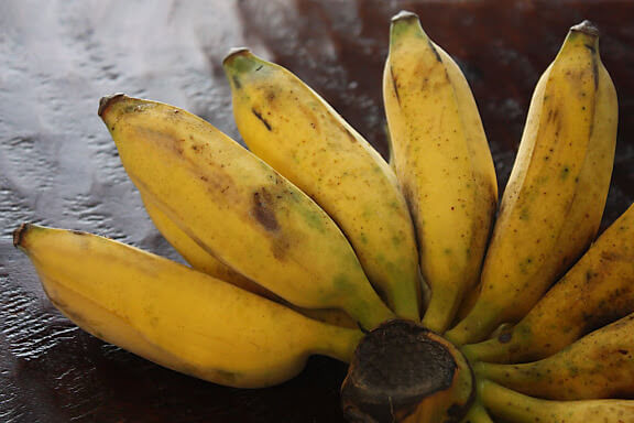 burro-bananas