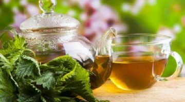 Nettle Tea Shown To Be Effective In Treating And Relieving Arthritis
