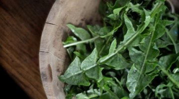 11 Amazing Health Benefits About Dandelion Greens That May Save Your Life