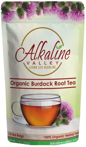 Organic Burdock Root Tea (15 Tea Bags)
